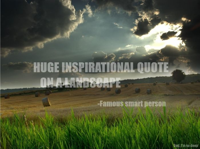 huge_inspirational_quote_on_a_landscape_by_a_famous_smart_person